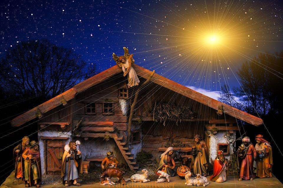 Der kleine Weihnachtsstern ~ 24
